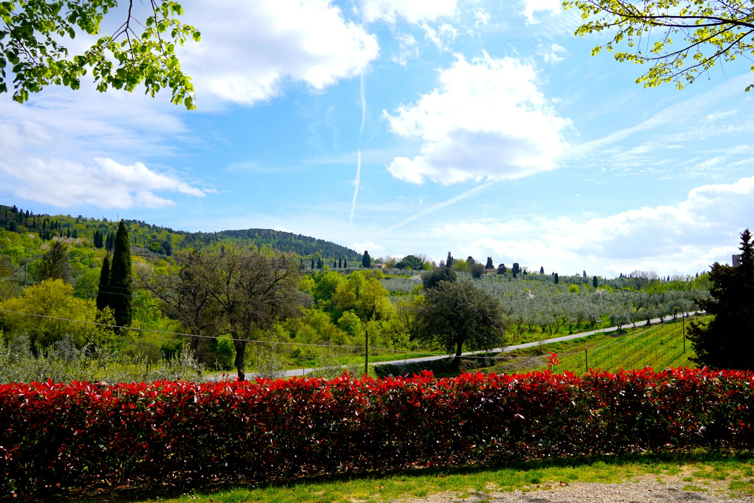 The best day trips from florence escaping to tuscany for Is florence in tuscany